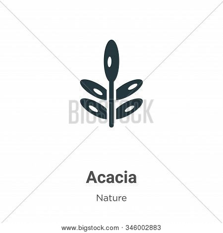 Acacia icon isolated on white background from nature collection. Acacia icon trendy and modern Acaci