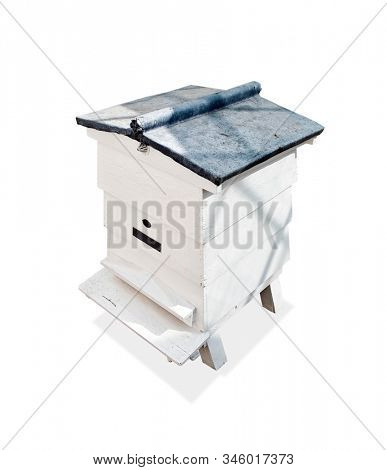 Bee hive on white background