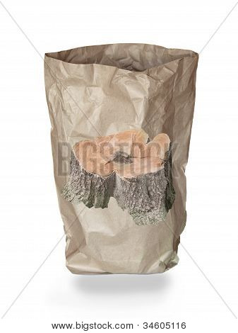 used recycle paper bag