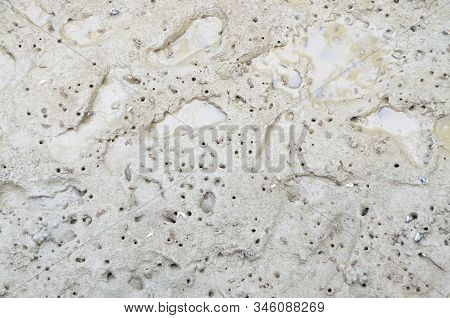Texture And Pattern Of Mud In Mangrove Forest Swamp With Crab Paw