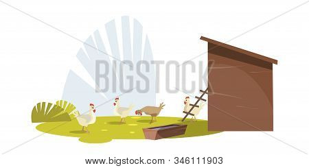 Chickens On Poultry Farm Flat Vector Illustration. Traditional Farming. Feeding Chicks Near Hennery.