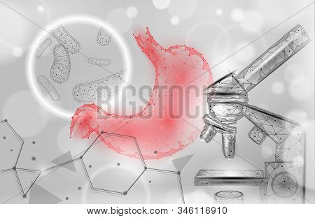 Human Stomach Microscope 3d Low Poly Render Probiotics. Healthy Normal Digestion Flora Of Human Inte