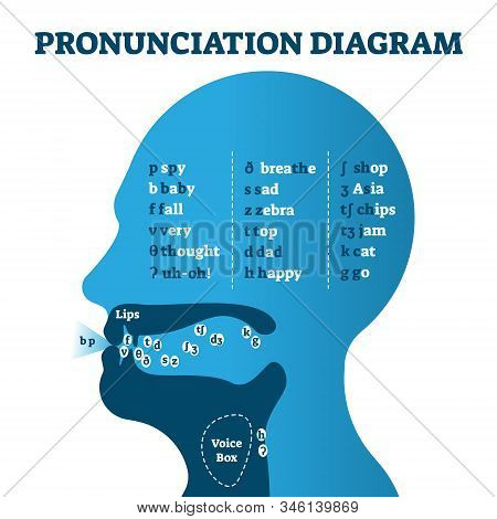 Pronunciation Diagram Chart With Letters And Corresponding Sounds, Vector Illustration Educational I