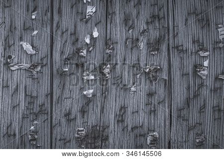 Old Wooden Noticeboard Studded With Rusty Nails And Paper Clips With Scraps Of Old Papers. Backgroun
