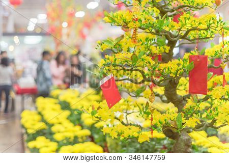 Yellow Mum Pots And Artificial Yellow Apricot Trees With Blurry Customer Shopping At Tet Market