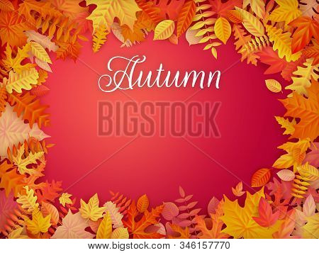 Autumn Sale Background Layout In Frame From Leaves. Shopping Sale Or Promo Poster And Frame Leaflet