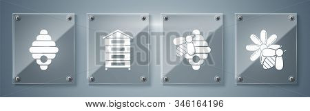 Set Bee And Flower, Hive For Bees, Hive For Bees And Hive For Bees. Square Glass Panels. Vector