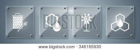 Set Honeycomb, Flower, Honeycomb And Honeycomb With Honey Dipper Stickicon. Square Glass Panels. Vec
