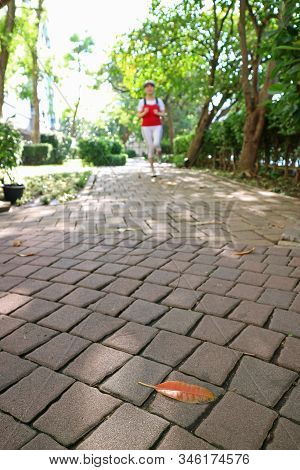 Closeup The Paving Path In The Park With Blurry Jogging Woman In Afar