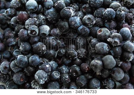 Blueberries Summer Berries Food Blue Forest Berry