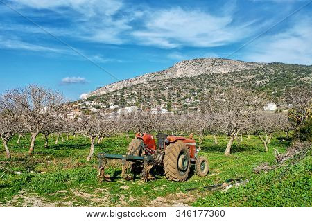 Old Red Tractor. Spring, The Beginning Of Agricultural Work In The Garden And Field. Greece.