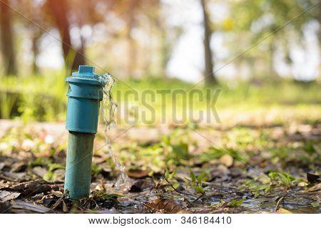 Wasting Water,leaking Water Pipe, Water Leaking Drop In The Garden