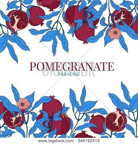 Vector Pattern With Pomegranate Fruits And Text Template On A White Background. Design For Cosmetics