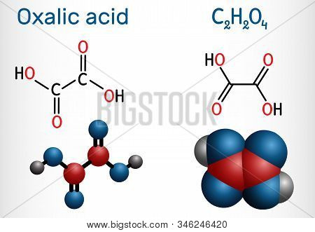 Oxalic Acid  C2h2o4 Molecule. It Is Dicarboxylic Acid. Structural Chemical Formula And Molecule Mode