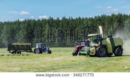 Forage Harvester Cutting Grass Silage Crop In Field And Filling Tractor Trailer. Agriculture Concept