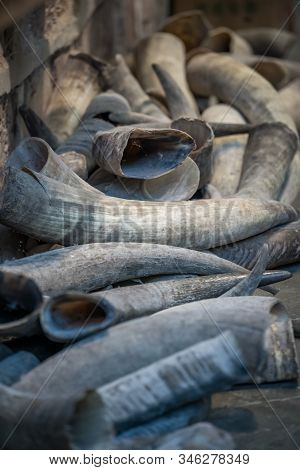 Pile Of Animal Tusks For Sale In The Local Shop In Market In The Old Town Of Fenghuang, Known As Pho