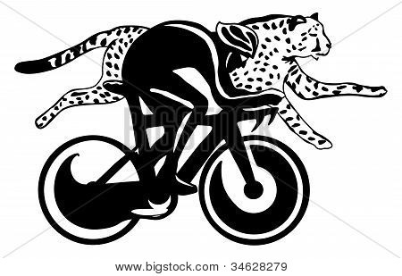 Cyclist and cheetah race, vector illustration