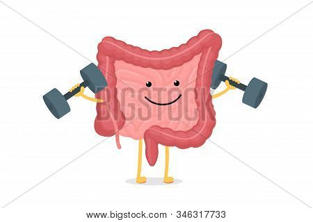 Cute Cartoon Healthy Intestines Character With Dumbbells. Abdominal Cavity Digestive And Excretion H