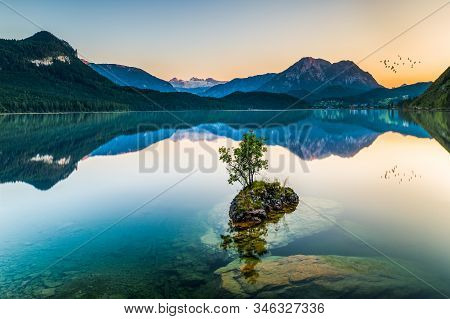 Lone Plant In Altausseer See After Sunset, Reflected Mountains And Birds
