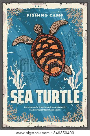 Vector Sea Turtle, Underwater Animal In Deep Sea Waters Among Coral Reefs. Turtle With Brown Carapac