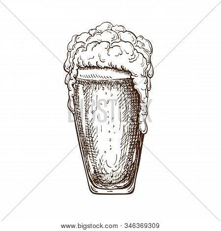 Vector Hand Drawn Pint Of Beer Full Of Wheat Beer With Foam. Beautiful Vintage Beer Mug Or Pilsner W