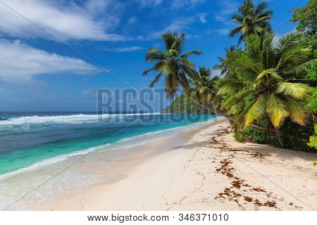 Exotic Beautiful Beach With Palm Trees And Blue Ocean In Tropical Island. Summer Vacation And Tropic