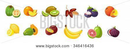 Cartoon Tropical Exotic Fruits Set On White Background