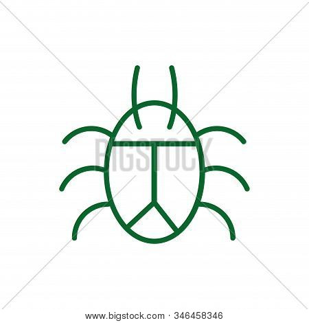 Bug Design Of Insect Pest Infestation Parasite Macro Cimex Close And Beetle Theme Vector Illustratio