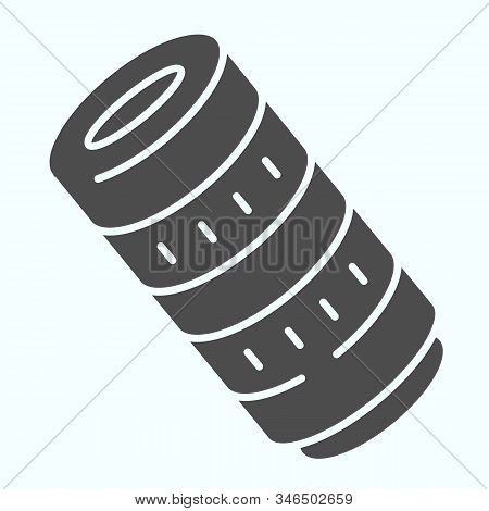 Professional Camera Lens Solid Icon. Camera Objective Vector Illustration Isolated On White. Profess
