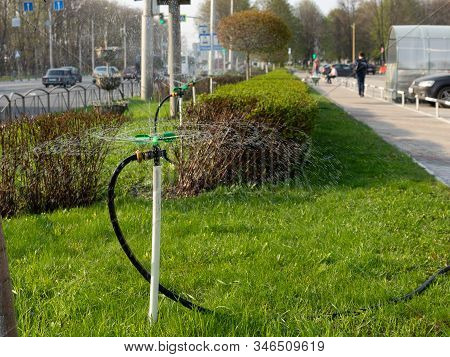 Grass Watering. Smart Garden Activated With Full Automatic Sprinkler Irrigation System. Watering Law