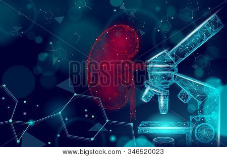 Human Kidneys Medicine Microscope Research Concept. Medical Help Therapy Analysis Treatment. Urinary