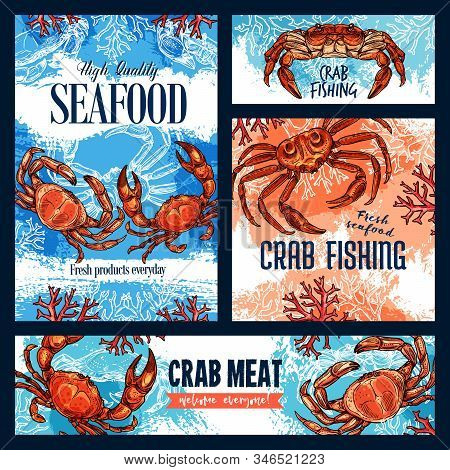 Seafood, Crab Fishing And Meat Of Crustacean Animal. Vector Sketch Posters Of Underwater Crab With C
