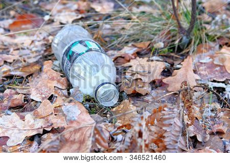 Environmental Pollution By Household Waste. Plastic Bottle Lying Around Brown Leaves In Forest. Conc