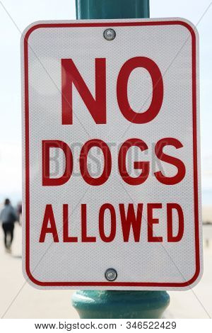 No Dogs Allowed. Reflective sign on a post. Dogs are not allowed on this pier in Seal Beach California.