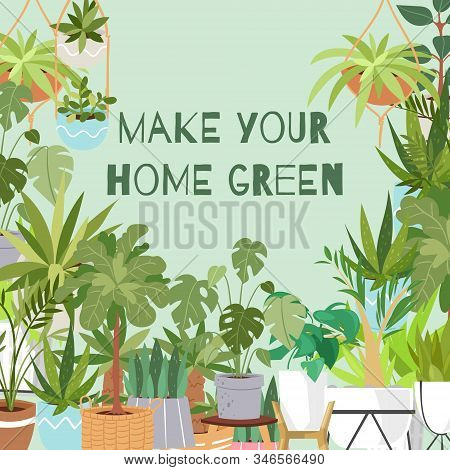 Make Your Home Green Plants Vector Poster Illustration. Plants, Cactus, Monstera Succulents For Home