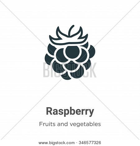Raspberry icon isolated on white background from fruits collection. Raspberry icon trendy and modern