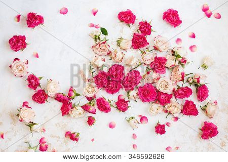 Red And Pink Roses Background. Collection Of  Roses And Petals Arranged On White  And Gold Textured