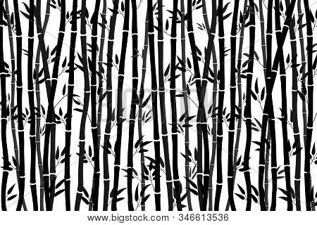 Abstract Background - Bamboo Forest. Black Drawing Of Bamboo Stalks On A White Background. Vector Il
