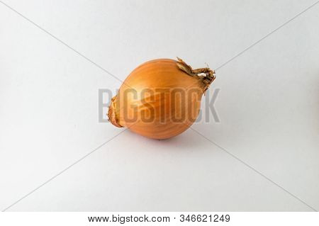 Ripe Onion On A White Background Food Isolated