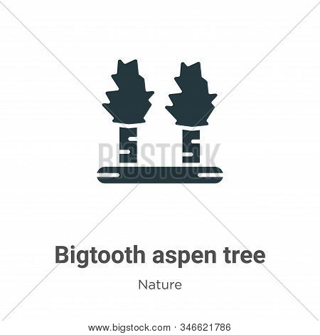 Bigtooth aspen tree icon isolated on white background from nature collection. Bigtooth aspen tree ic