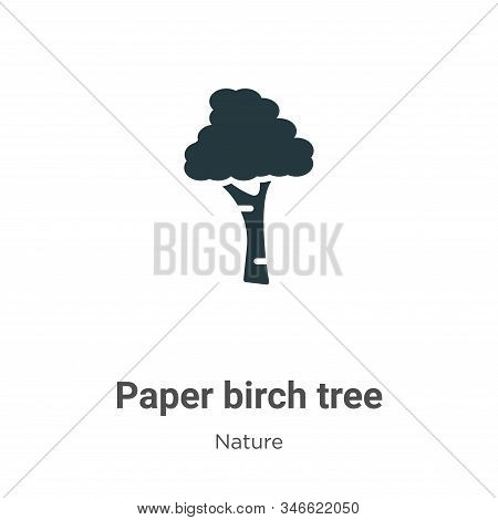 Paper birch tree icon isolated on white background from nature collection. Paper birch tree icon tre