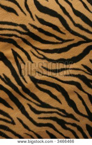 Tiger Strips