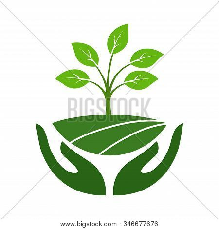 Icon Of Hands Carefully Holding Green Leaves. Symbol Of Ecology, Environmental Awareness, Nature Pro