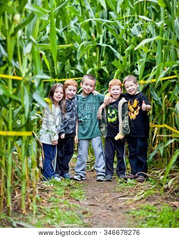 Shelton, CT, USA: Sept 2012; Best friends having fun in a typical American pumpkin patch corn maze during the fall season