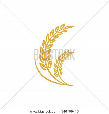 Vector Logo Design And Elements Of Wheat Grain, Wheat Ears, Seed Or Rye, Prosperity Symbol