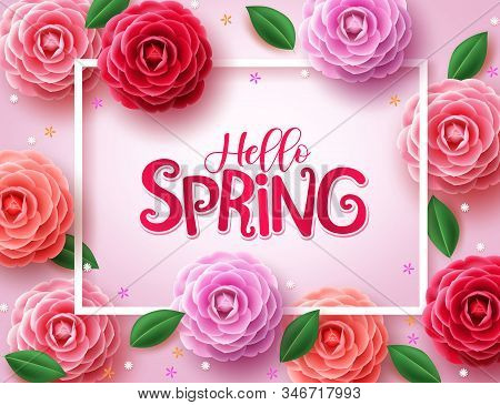 Spring Vector Background. Hello Spring Greetings Text With Various Colors Of Camellia Flowers And Gr