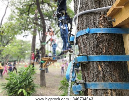 Ratchet Tie Down Strap In Blue Rope Holding Sling Tied To Tree For Tree Climbing Activity.adventure