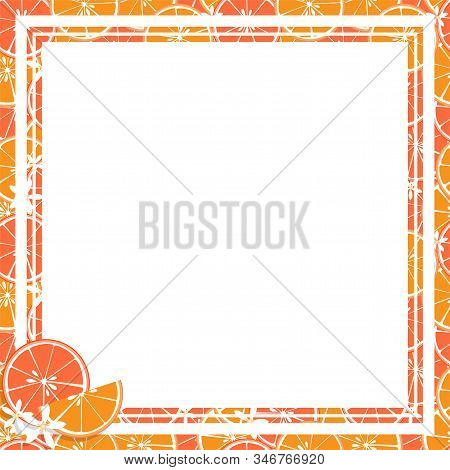 Vector Illustration Of Square White Frame And Rectangle Label On Citrus Fruit Background. Tropical F