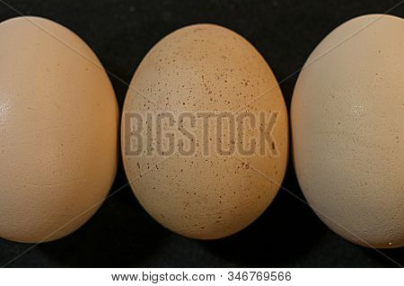Eggs And Chicken Eggs.good Food High Nutrition.