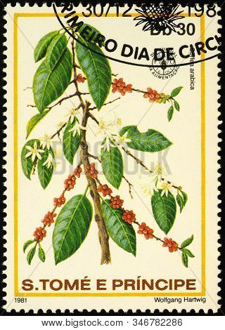 Moscow, Russia - January 23, 2020: Stamp Printed In Sao Tome And Principe Shows Branch Of Coffee Tre